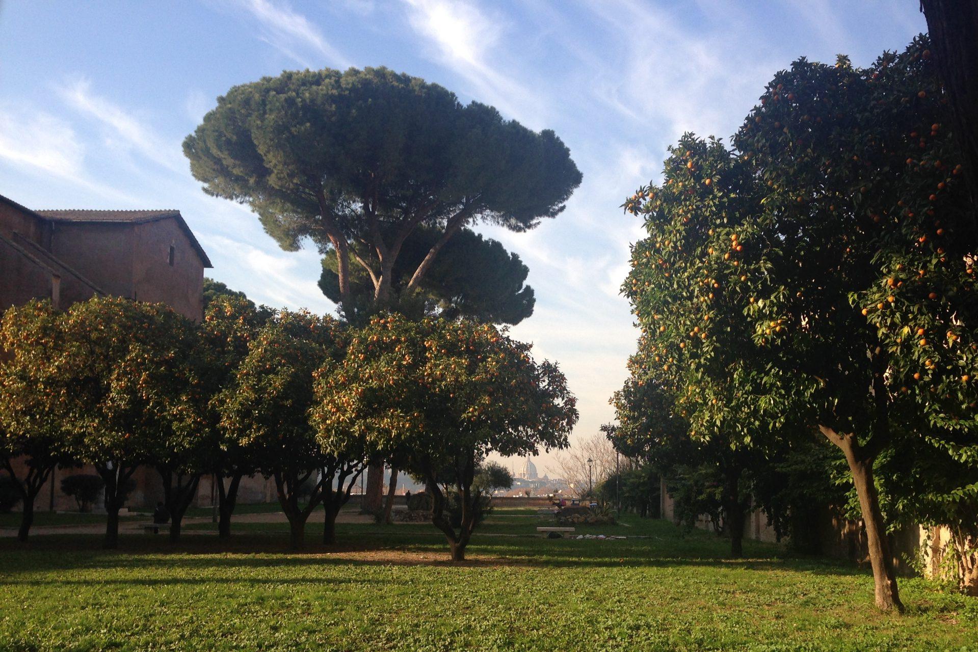 Апельсиновые сады, Рим